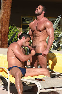 Gay musculoso escorts paginas