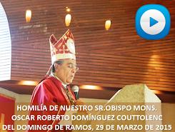 VIDEO DE LA HOMILÍA DEL SR OBISPO, DEL DÍA 29 DE MARZO DE 2015