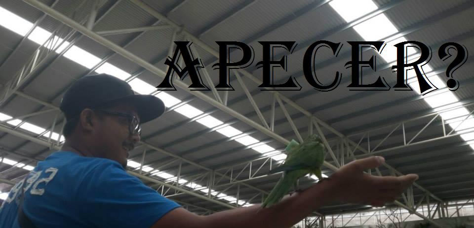 APEcER?