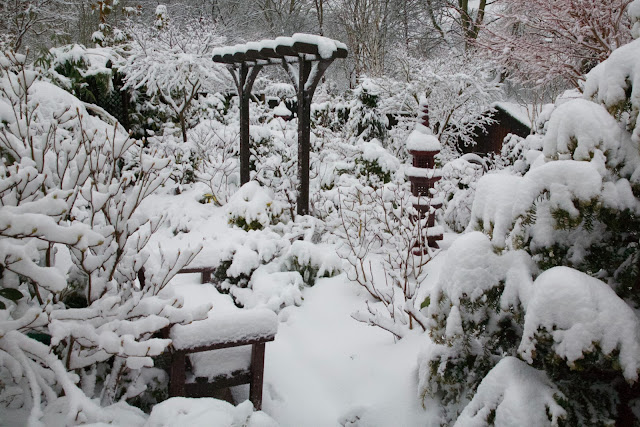 Lower garden after early spring snow