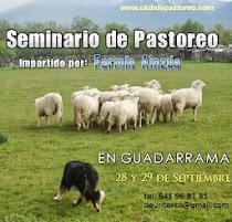 Seminario pastoreo