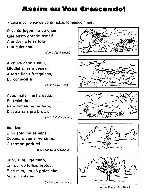 atividades alfabetizacao jardim horta pomar:Pedagógiccos: Desenvolvimento de uma planta