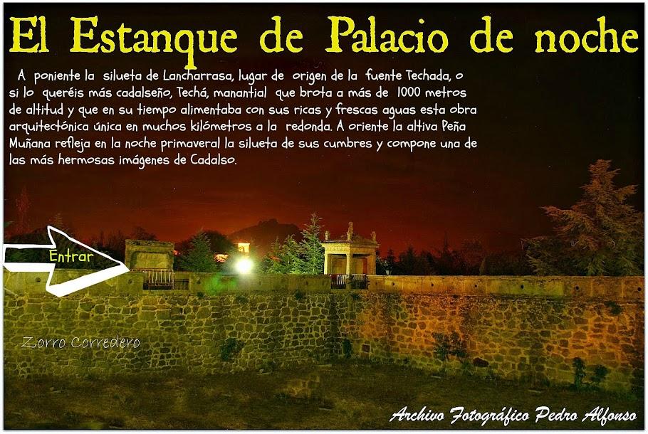 El Estanque de Palacio de noche