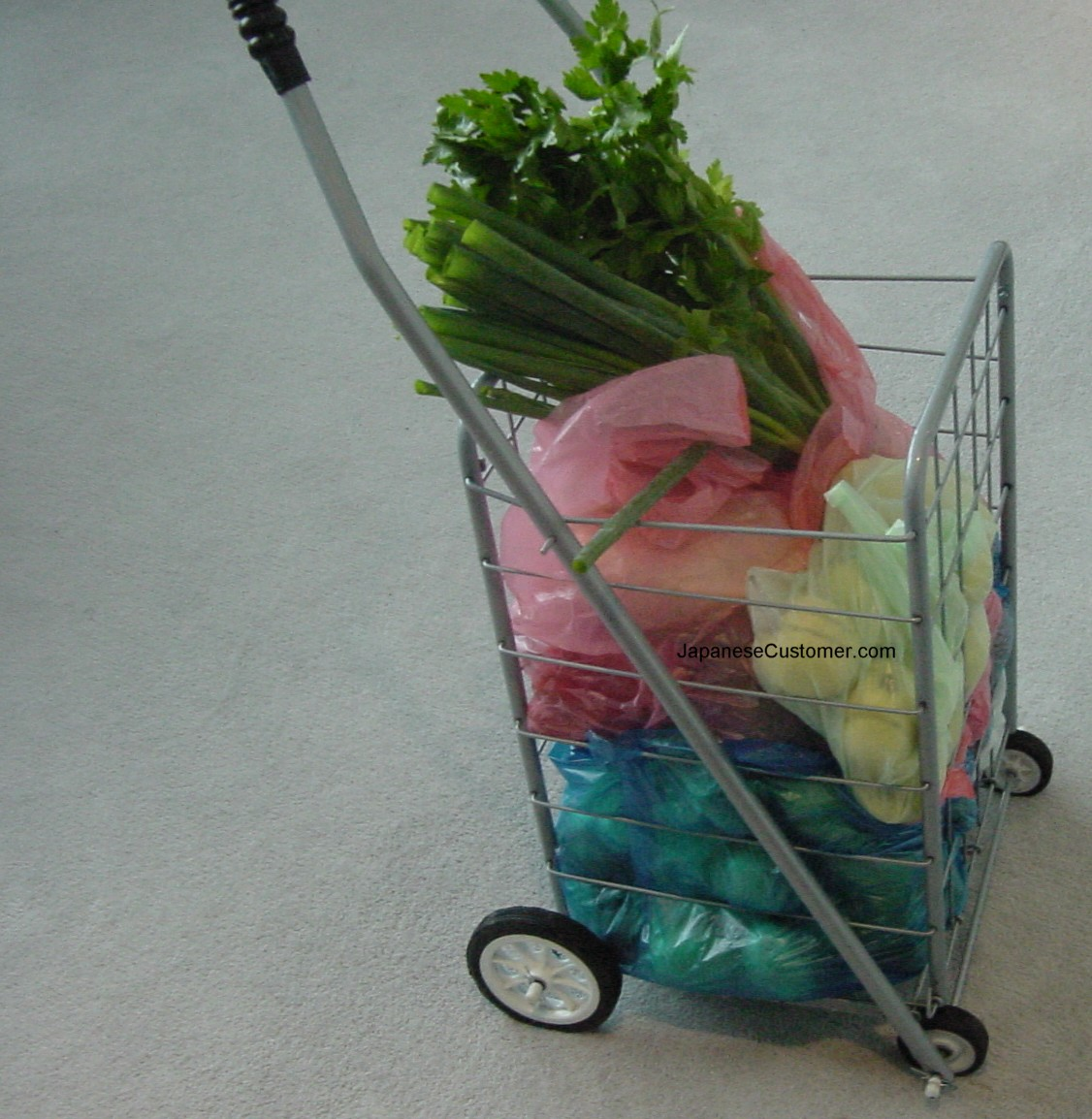 Australian shopping trolley Copyright Peter Hanami 2004