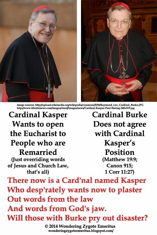 "divorce,remarriage,cardinal,Kasper, Burke,limerick,marriage,bible,Jesus,catholic,""canon law"""