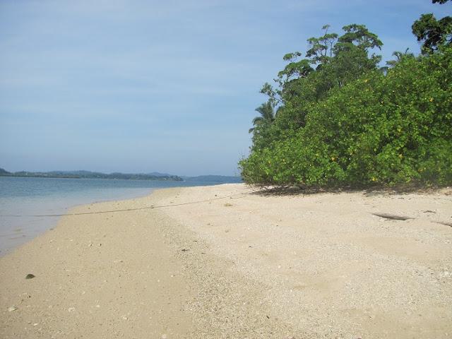 Avis Island, Mayabunder