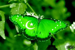 World Largest Collection of Pak Patriotic Songs