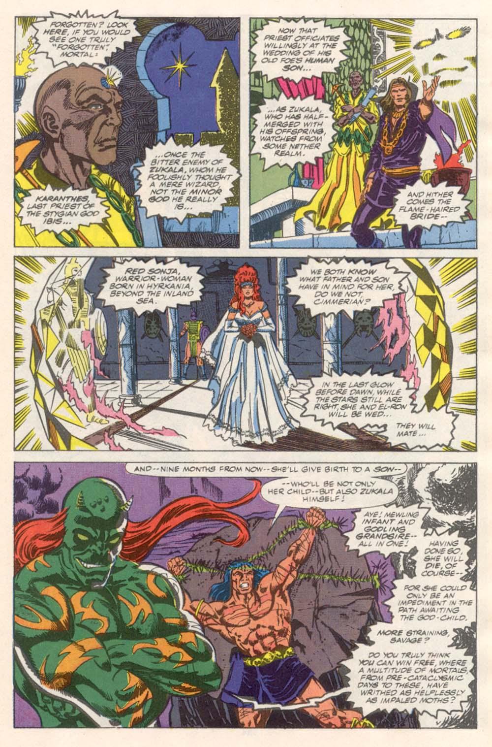 Conan the Barbarian (1970) Issue #243 #255 - English 10