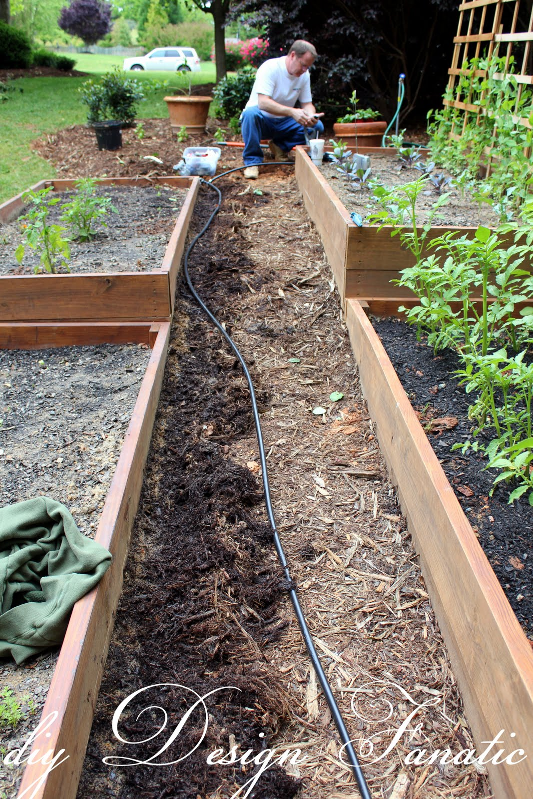 Diy design fanatic install a drip irrigation system to for Home garden drip irrigation design