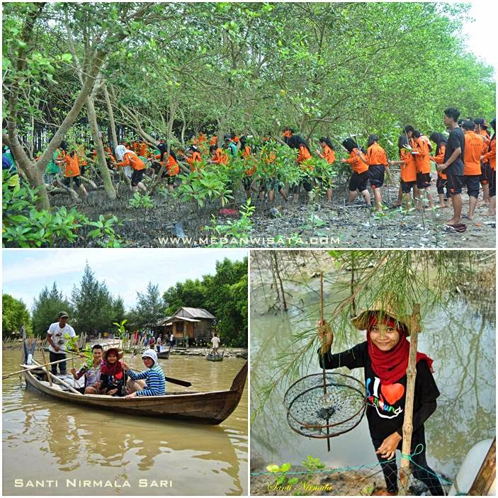 Traveled Mangrove In Kampoeng Nipah North Sumatra