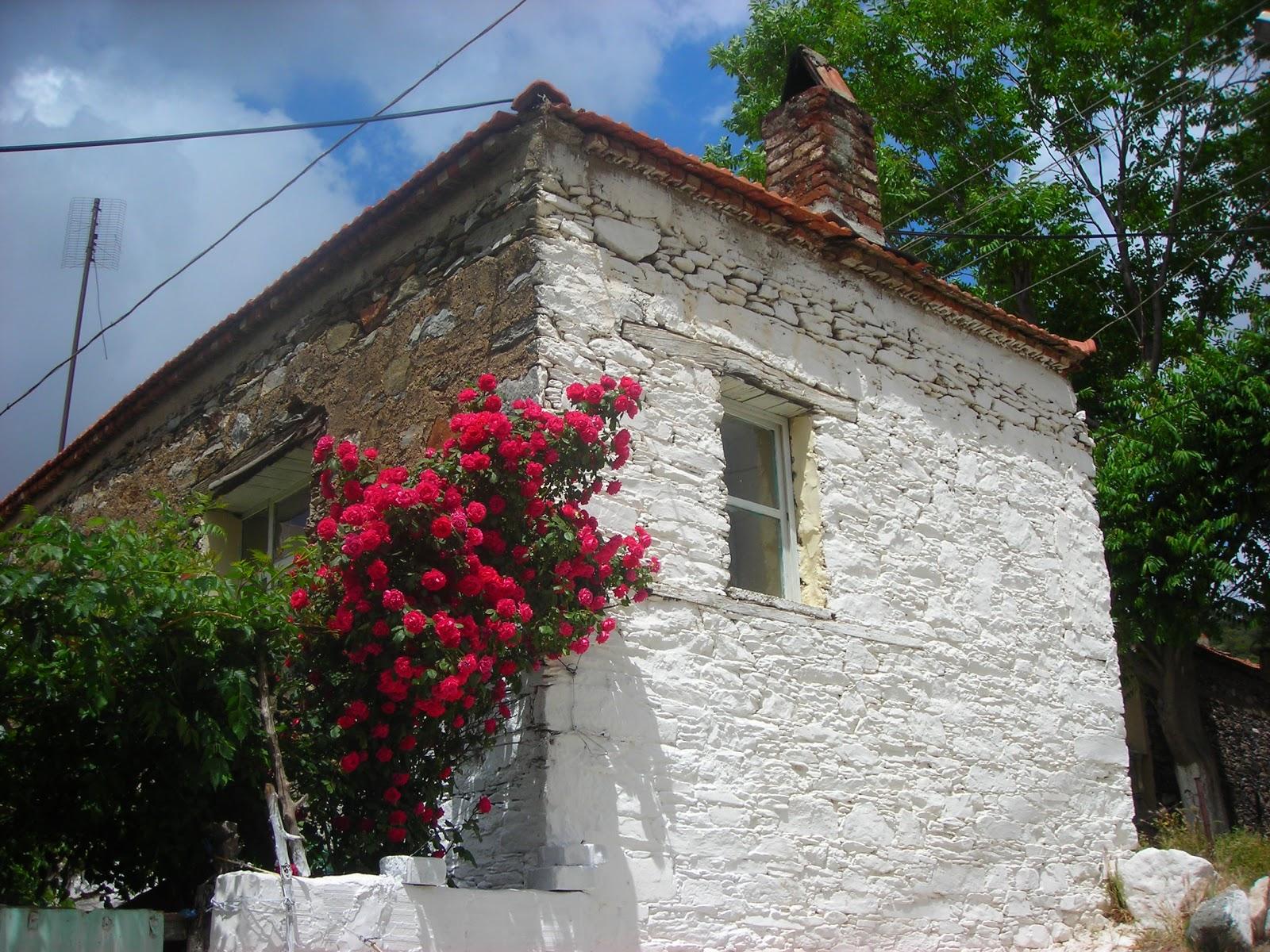 Izmir kavacık köyü satılık ev