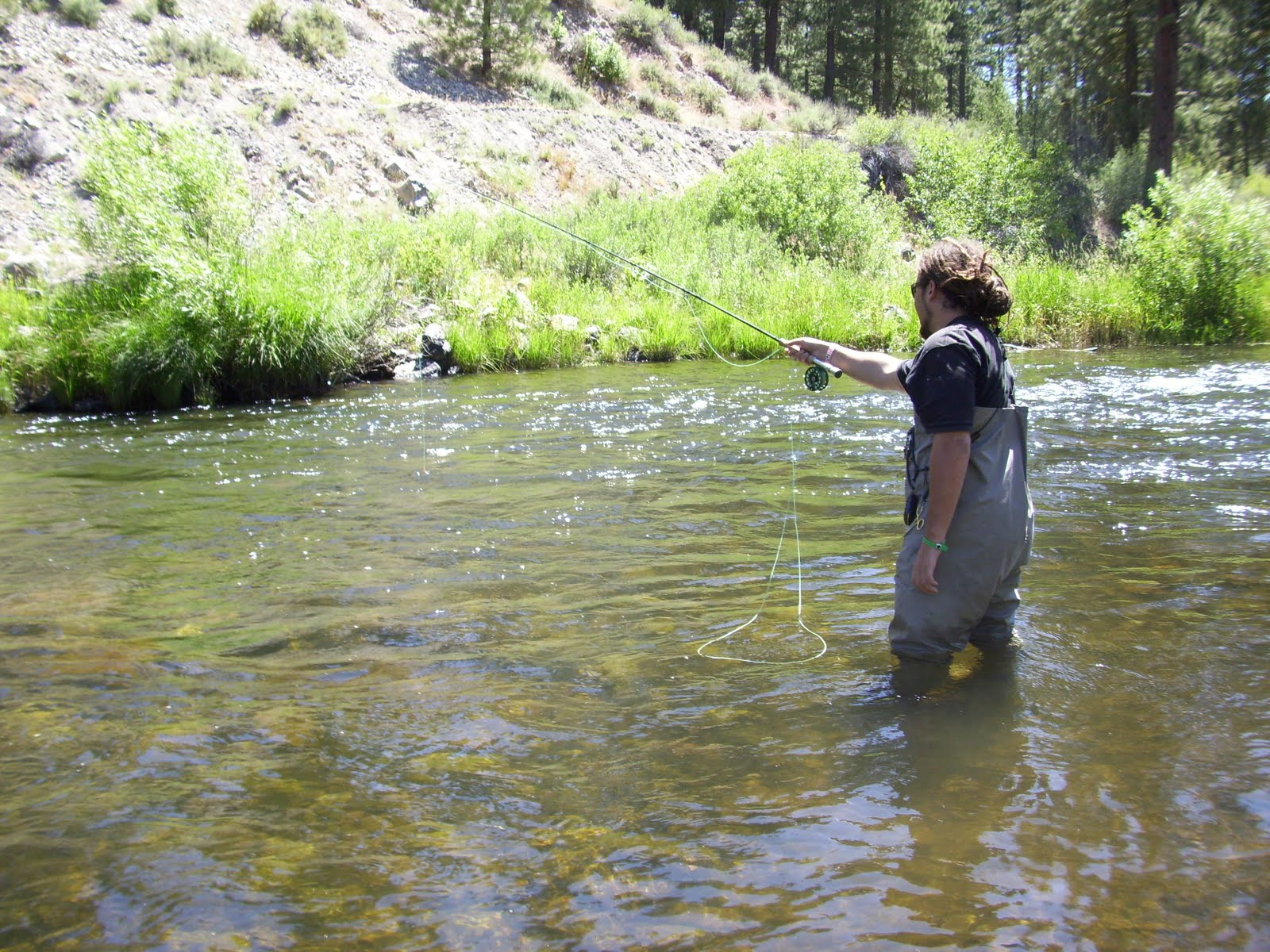 Northern sierra fly fishing early summer for Sierra fly fishing