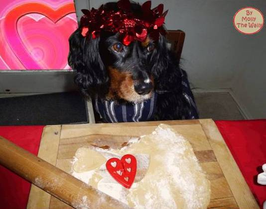 Molly The Wally says, make a start and show some art on my heart shaped cookies.10