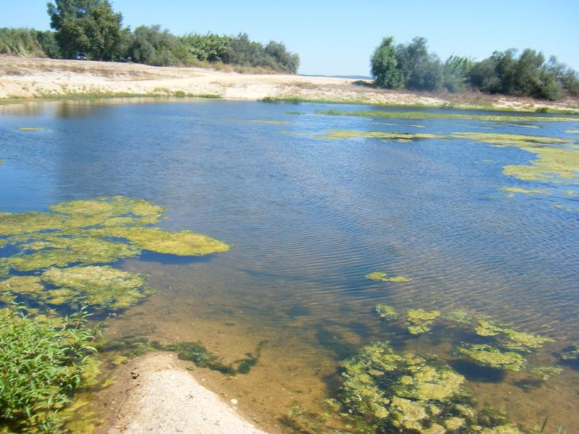 Água Lima do Rio Sorraia