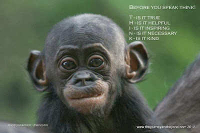 """""""Before you speak think! T - Is it true, H - Is it helpful, I - Is it inspiring, N - Is it necessary, K - Is it Kind"""" picture of a baby chimpanzee"""