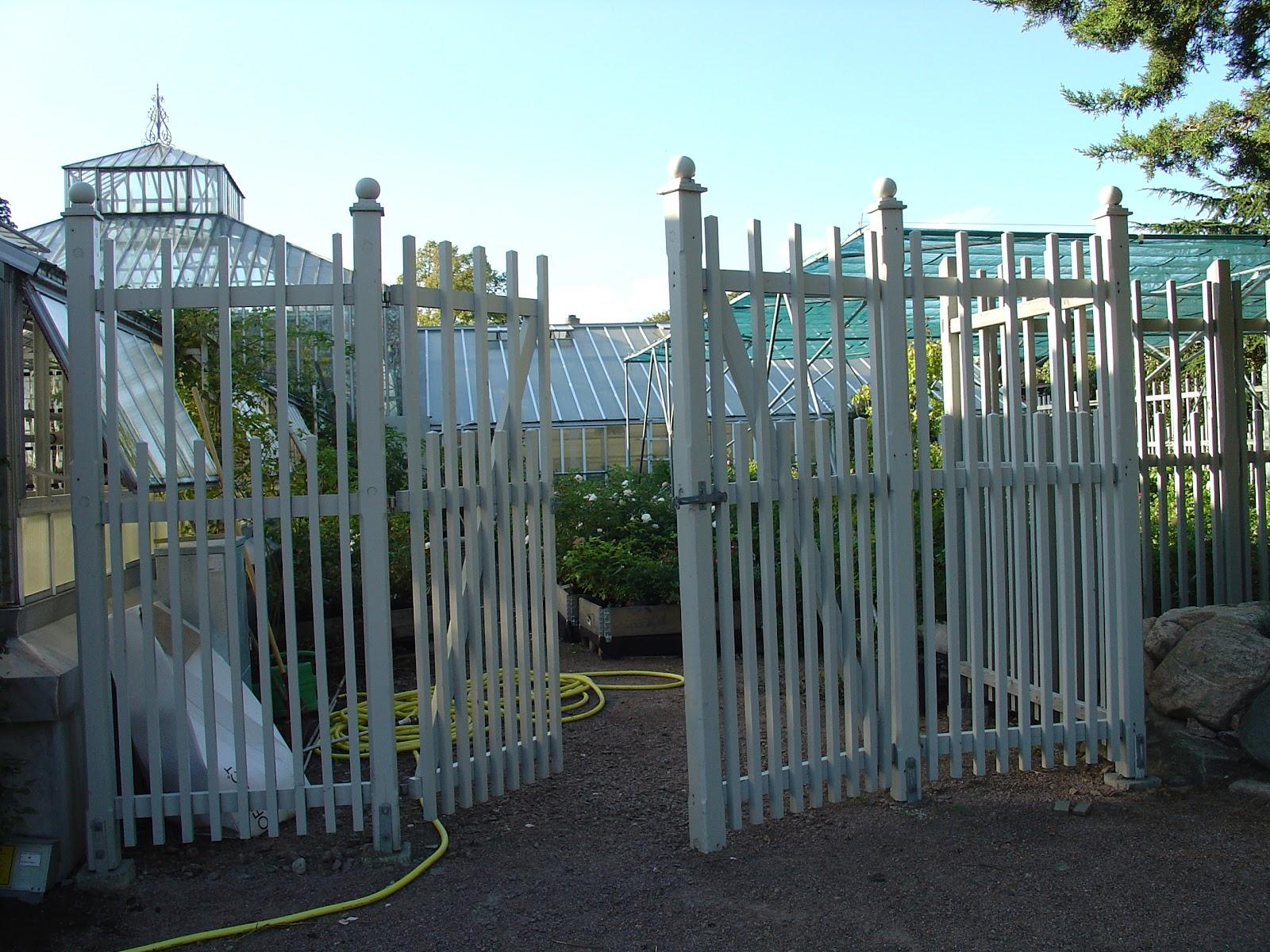 Torvan trädgård: februari 2012