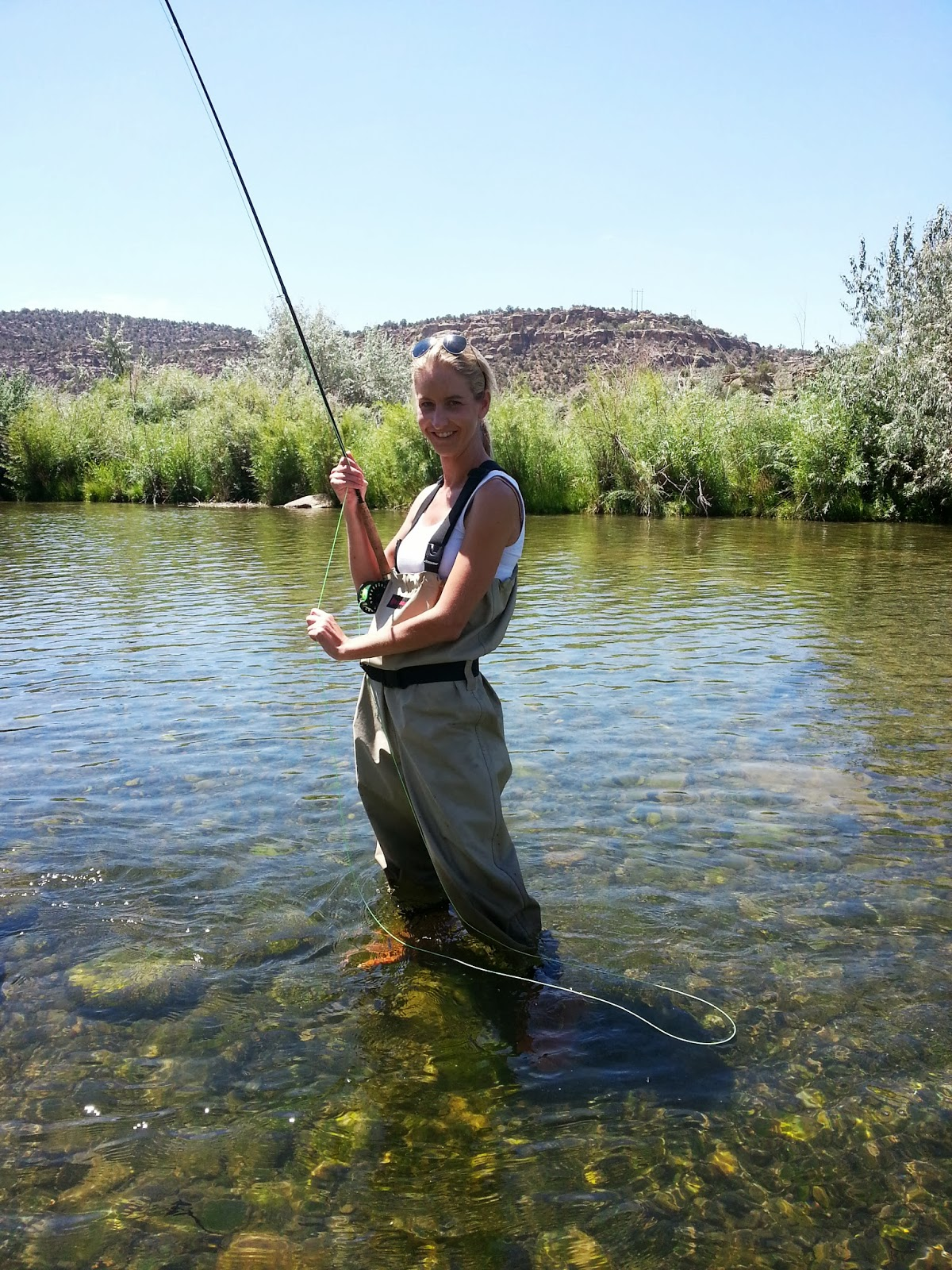 Colorado springs fishing license military for Colorado fishing laws