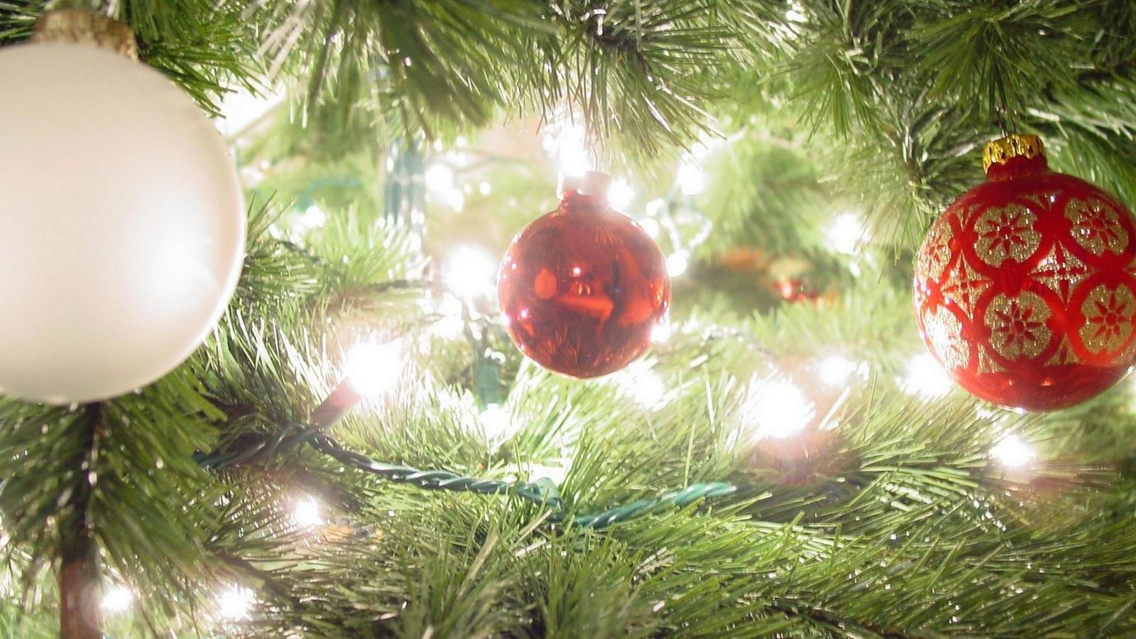 http://2.bp.blogspot.com/-0LmLAkGCUvs/TutT8-i5H4I/AAAAAAAAY-M/l2taOT165Iw/s1600/Christmas+HD+Wallpapers.jpg