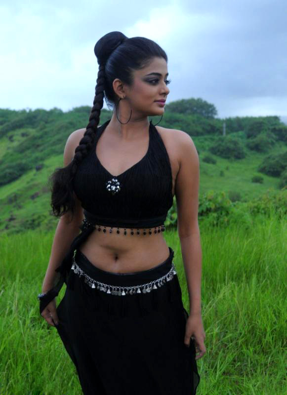 Priyamani saree hot navel photos