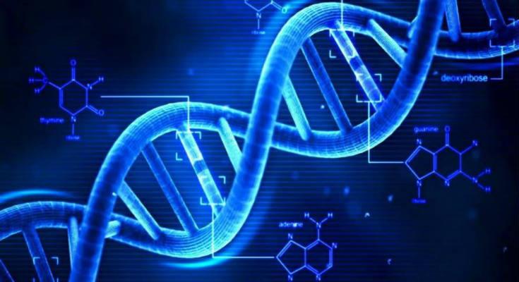 Έγινε για πρώτη φορά στις ΗΠΑ καταγραφή της μνήμης του DNA ανθρώπινων κυττάρων