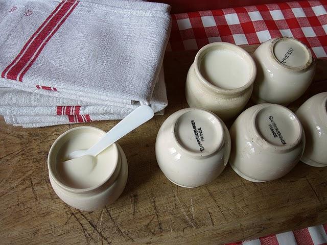 Un baobab dans le salon yaourts sans yaourti re - Fabrication de yaourt maison sans yaourtiere ...