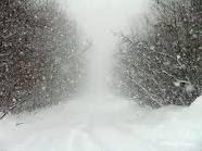 badai salju indonesia