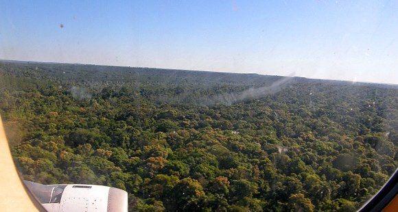 Vista aérea de la selva nicaragüense