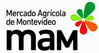 5k del MAM (organiza: AAU)