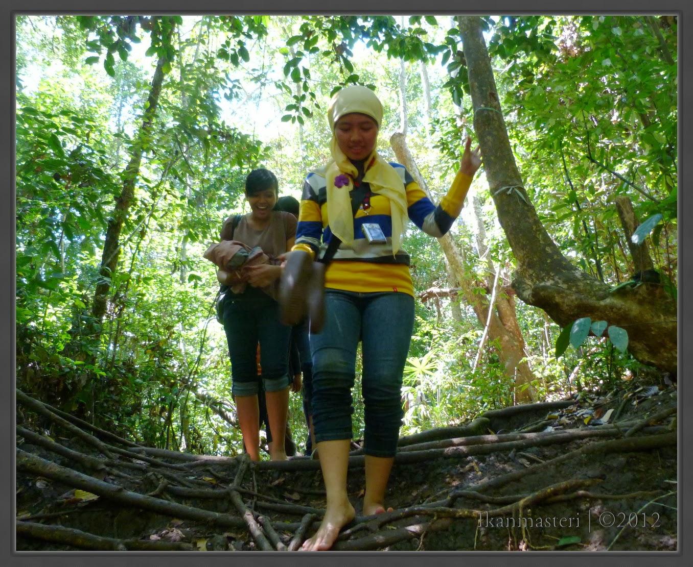 Menembus hutan Pulau Sempu