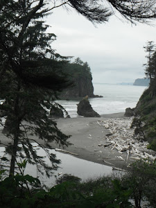 Ruby Beach, Olympic Nat'l Park