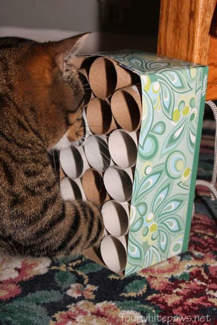 DIY cat toy from paper tube 2