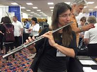 diana mcnulty - titanium flute