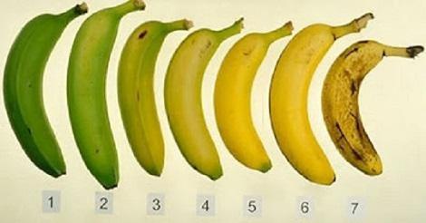 طريقة اختيار أحسن موزة  لصحتك