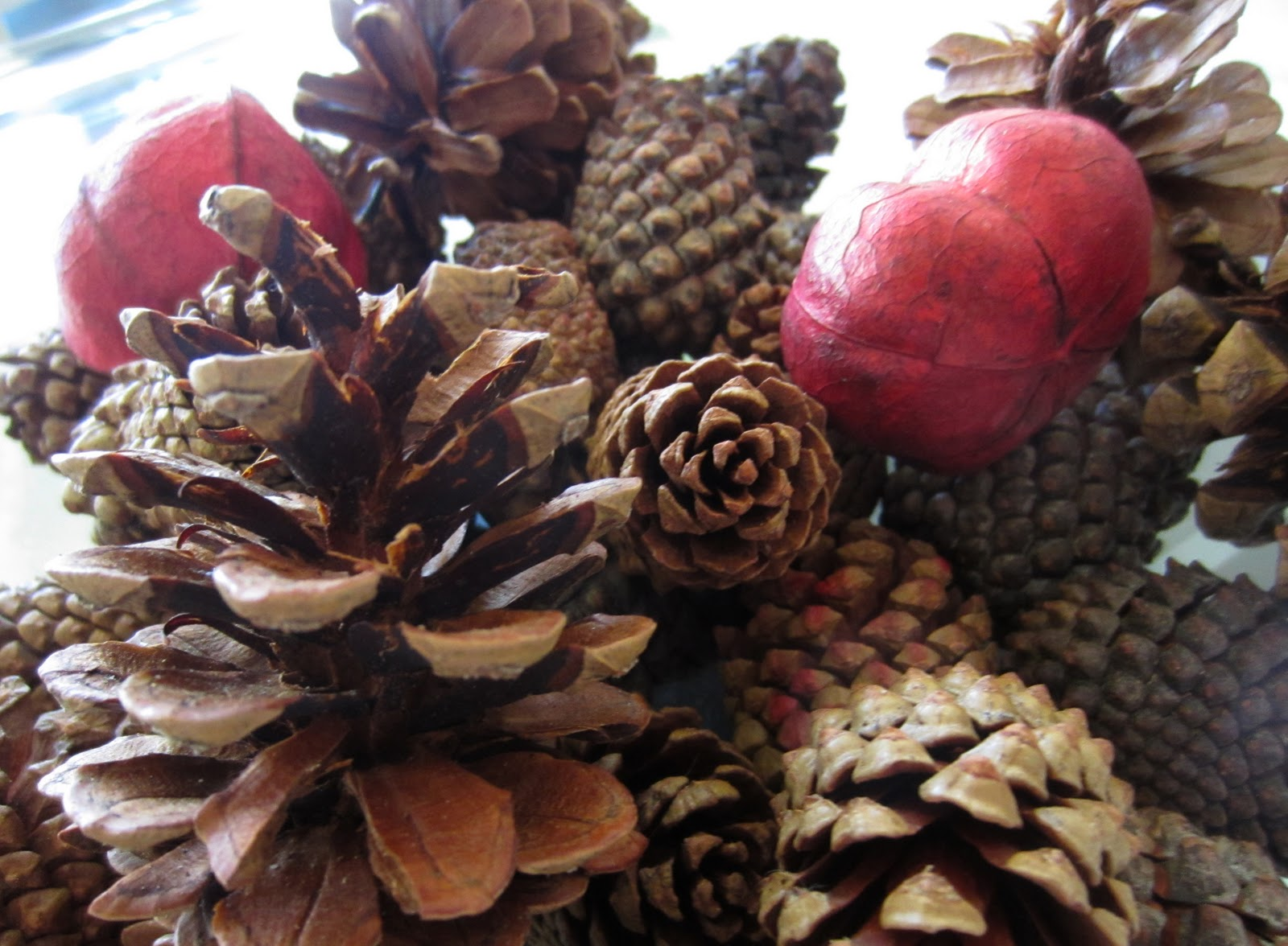 3 things for fall life in leggings for Things to make with fir cones