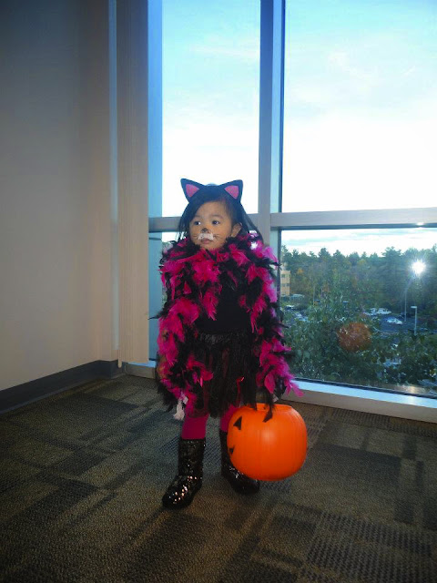Cat | Halloween Costume | Chichi Mary Kid's Boutique