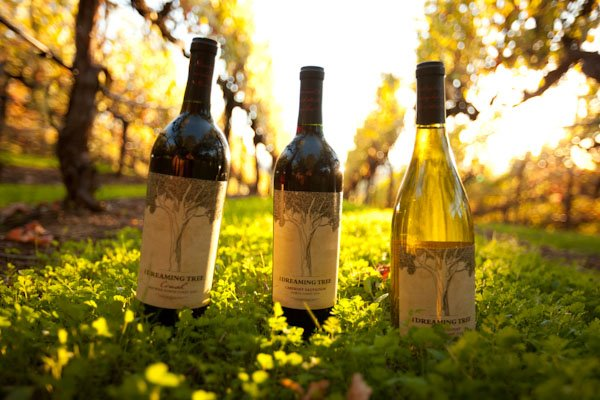dreaming tree affordable wine