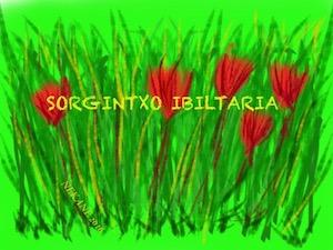 SORGINTXO IBILTARIA