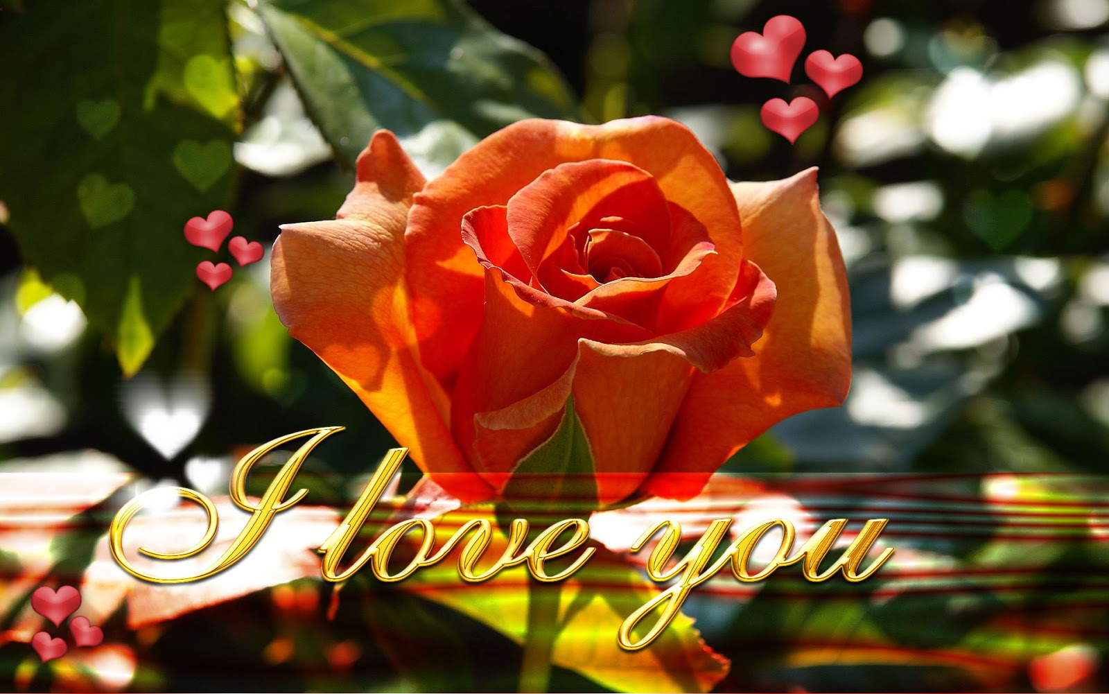 Wallpaper download in love - Http 2 Bp Blogspot Com 0od03wganfu Uowpl6zmy5i New Latest I Love You Wallpapers