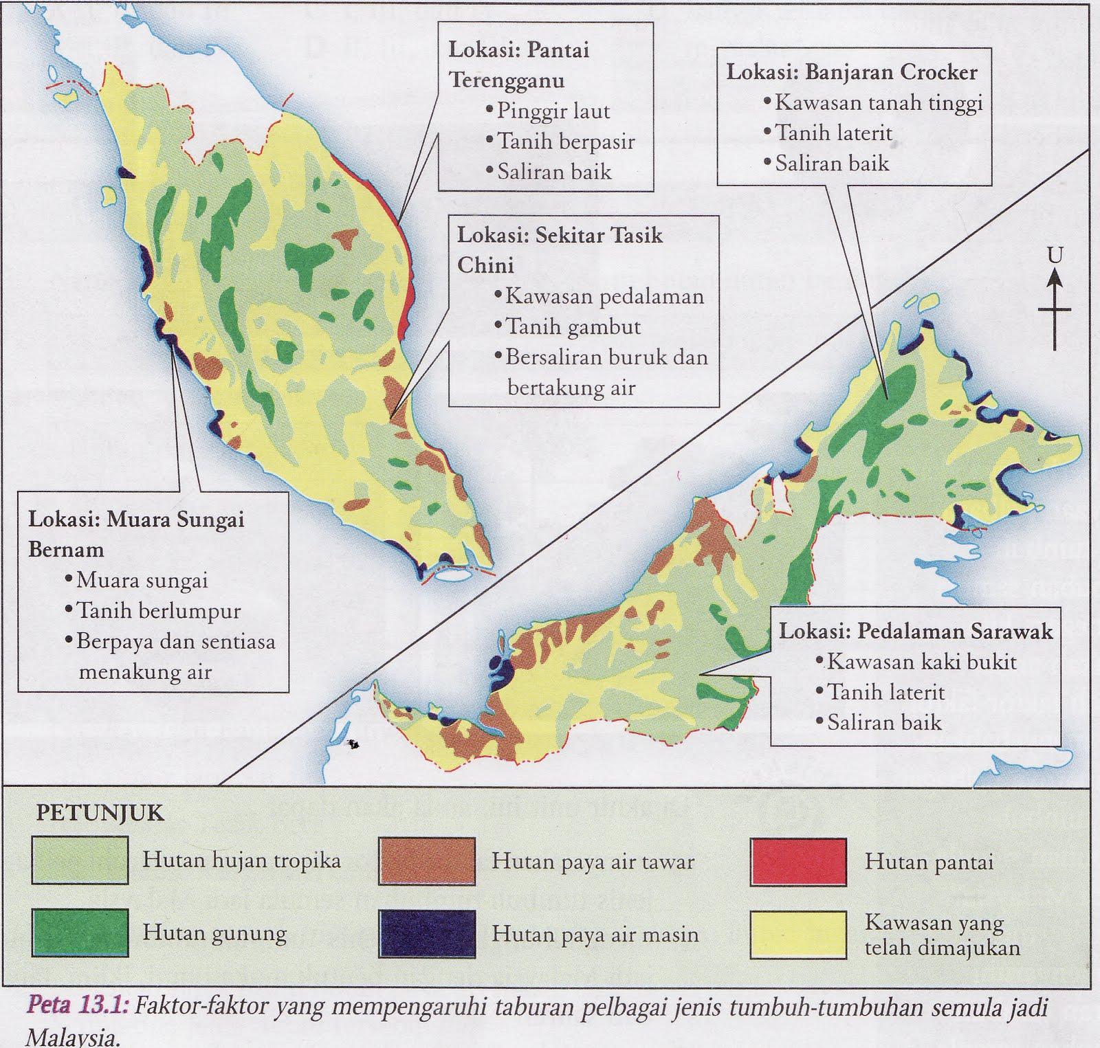 Tinta Tinta Ilmu Hutan Hujan Tropika