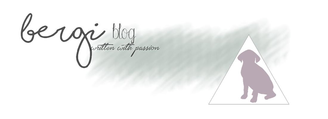 Bergi Blog