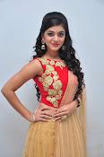 yamini bhaskar latest glam pics-thumbnail-1