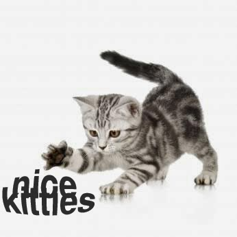 Nice Kitties