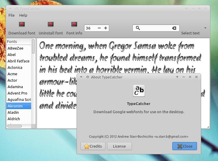 TypeCatcher di Ubuntu