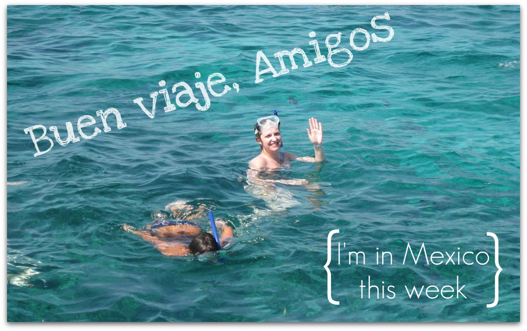 Our Wanderlust Cozumel Mexico Holiday