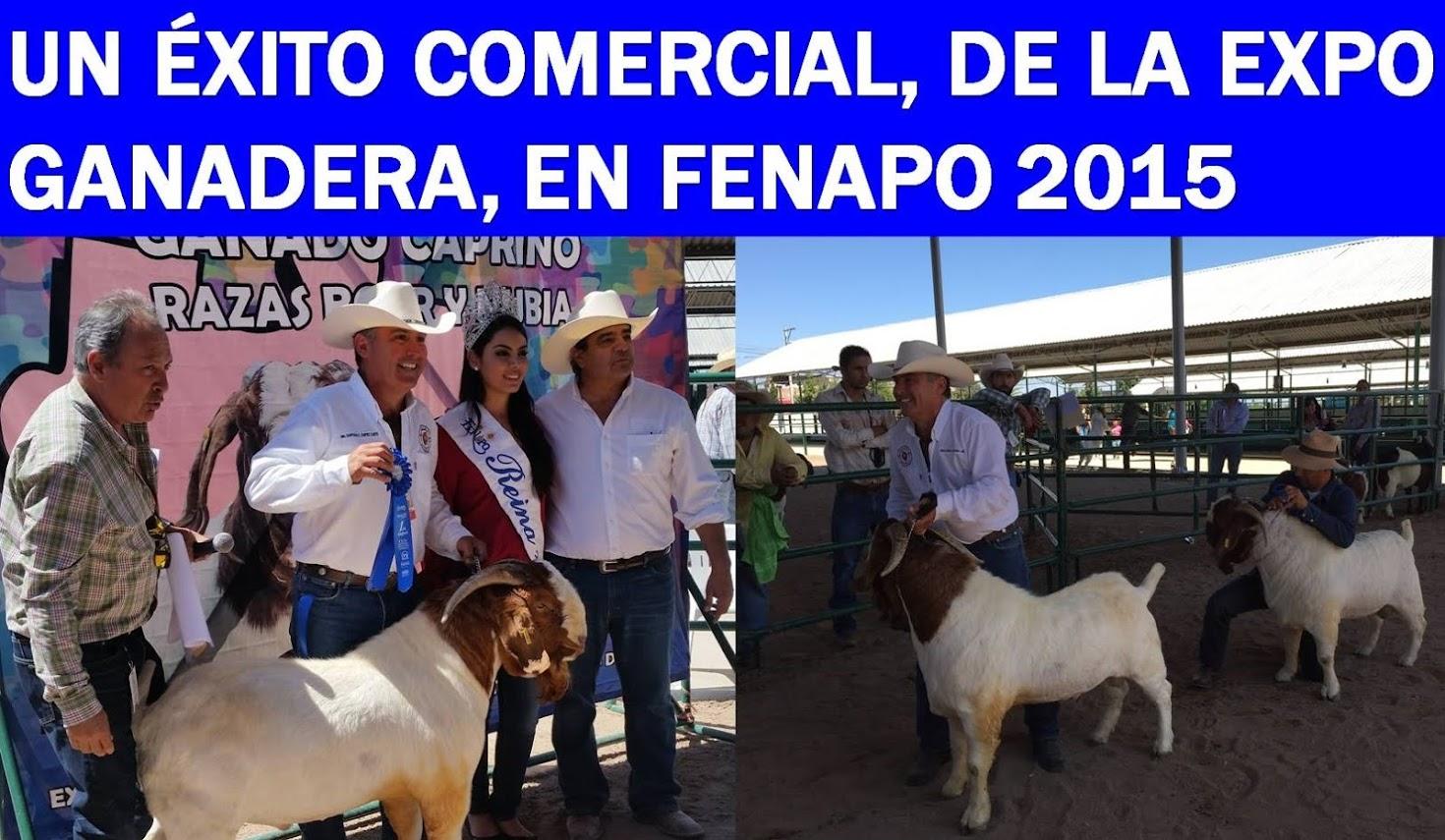 LA FENAPO 2015: LA MEJOR FIESTA DEL VERANO EN MÉXICO, Y EN EL MUNDO