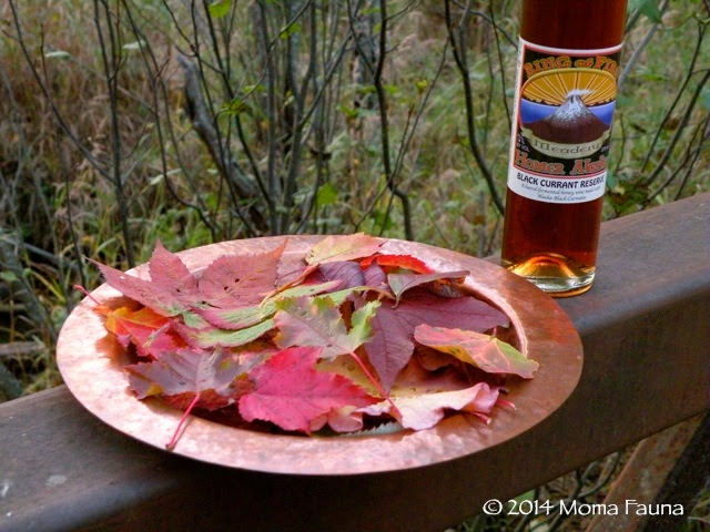 Autumn Equinox 2014: Leaves & Libations.