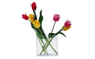 Tulipanes en jarrones de cristal