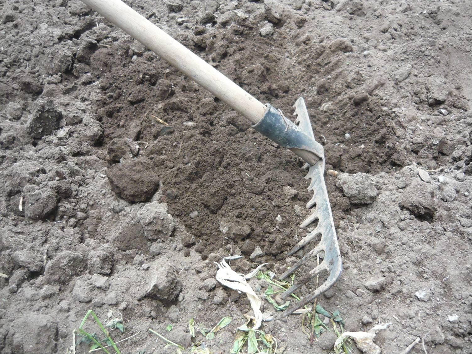 Alternativa ecol gica cultivo de vainita for Materiales que forman el suelo