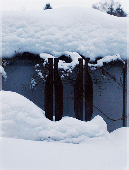 Psynopsis Frozen Art