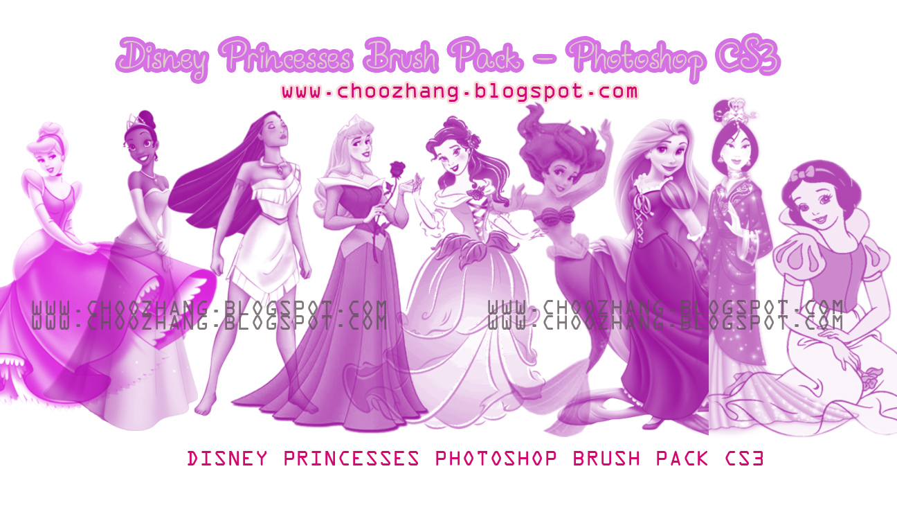 http://2.bp.blogspot.com/-0Pp2Q_2yN88/Tn-oimhFZqI/AAAAAAAAAYc/qUxm6O8m0I8/s1600/princessbrushpackposter.jpg